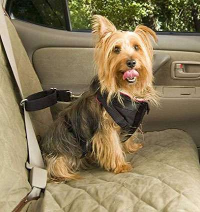 Car Harnesses For Dogs Reviews
